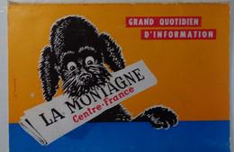 Petit Calendrier De Poche 1973 Journal Grand Quotidien D'information La Montagne Centre France - Chien - Formato Piccolo : 1971-80