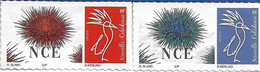 NOUVELLE CALEDONIE (New Caledonia) -  Timbre Personnalisé - Oursin - Sea Urchin  - 2021 - Neufs