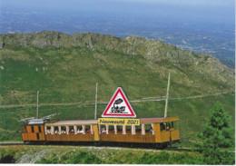 715 - Train à Crémaillère De La Rhune, Vers Le Col De St-Ignace (04) - - Trains