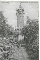 Oliva, Gdansk, Aussichtsturm Auf Dem Karlsberg, Foto, Keine AK - Poland