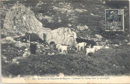 CPA Environs De Bagnères-de-Bigorre Cabanes De Vaches Dans La Montagne - Bagneres De Bigorre