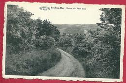 C.P. Rendeux-Haut =  Route  Du  PETIT-BOIS - Rendeux