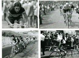 CYCLISME - WIELRENNEN - CICLISMO - 24 PHOTOS REPRODUCTION - EDDY MERCKX - Cycling