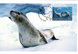 """"""" LEOPARD DE MER  A.A.T. """" Sur Carte Maximum Et PAP Neuf Du Territoire Antarctique Australien De 2001. Parf état. CM - Tarjetas – Máxima"""