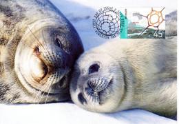 """"""" PHOQUE WEDDELL A.A.T. """" Sur Carte Maximum Et PAP Neuf Du Territoire Antarctique Australien De 2002 Parfait état CM - Tarjetas – Máxima"""