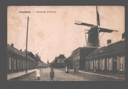 Turnhout - Chaussée D'Anvers - Molen / Moulin / Mill - Geanimeerd - Turnhout