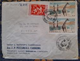 Douala Cameroun Pour Paris France ( Le 09 09 1959) Cameroun - Covers & Documents