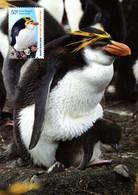 """✅ """" PINGUOINS ROYAUX / A.A.T. """" Sur Carte Maximum Et PAP Neuf Du Territoire Antarctique Australien De 2002 CM - Tarjetas – Máxima"""