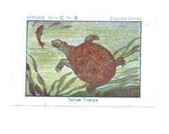 Chromo Afrique Africa A.E.F. Tortue Trionyx Turtle Pub: CEMOI Album N°5 Bien 75 X 50 Mm - Other