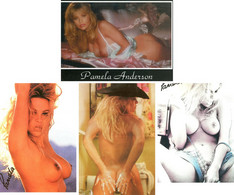 CELEBRITE PAMELA ANDERSON LOT 4 CARTES - Artistas