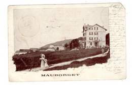 Carte Postale, Ct. Vaud, Mauborget, >> Cachet, Hôtel, Suisse, Schweiz, 1900 - VD Vaud