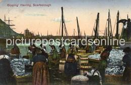 SCARBOROUGH GIPPING HERRING OLD COLOUR POSTCARD YORKSHIRE - Scarborough
