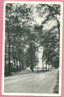 C.P. Retie = Steenweg  Op  KASTERLEE - Retie