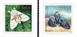 """IRLANDA /IRELAND /IRLAND /EIRE  -EUROPA 2021-""""ENDANGERED NATIONAL WILDLIFE""""- SERIE De 2  V. - N - 2021"""