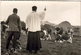 D63   LE MONT DORE  La Ferme De L'Angle Bénédiction Du Troupeau Le Jour De La Transhumance. Cachet Notre Belle Auvergne - Le Mont Dore