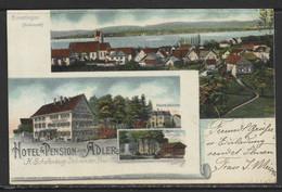 Carte P De 1902 ( Ermatingen / Hôtel & Pension Zum Adler ) - TG Thurgovia