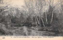 77-FONTAINEBLEAU LA FORET-N°T2591-D/0257 - Fontainebleau
