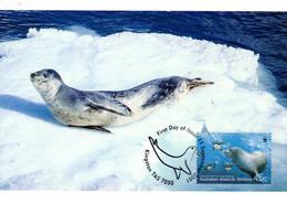 """"""" LEOPARD DES MERS / A.A.T. """" Sur Carte Maximum Et PAP Neuf Du Territoire Antarctique Australien De 2005. Parf état. CM - Tarjetas – Máxima"""