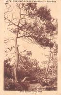56-CARNAC PLAGE-N°T2599-D/0107 - Auray