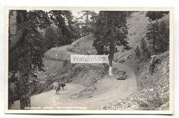 Troodos, Cyprus - Mountain Road, Car, Donkeys - C1950's Real Photo Postcard - Cipro
