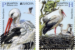 Weissrussland / Belarus / Biélorussie /BIAŁORUŚ 2019 MI.1300-01**, MA 1305-06,YVERT..  Europa. National Birds. - Belarus
