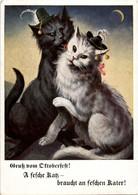 Gruss Vom Oktoberfest - Katzen - Cat - Muenchen