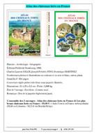 Atlas Des Châteaux Forts En France & Les Plus Beaux Châteaux Forts En France - Dictionaries