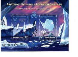 ROMANIA : POLAR REGIONS PROTECTION 1 Used Souvenir Block  - Registered Shipping! Envoi Enregistre! - Usati