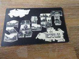 Westerlo: Salut De Westerloo - Westerlo