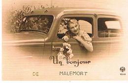 19  UN BONJOUR  DE   MALEMORT       CPM  TBE   696 - Andere Gemeenten