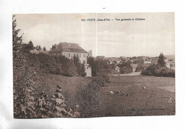 21 - PUITS ( Côte-d'Or ) - Vue Générale Et Château - Other Municipalities