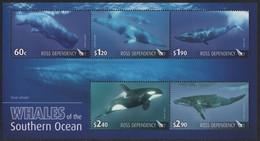 Ross-Gebiet 2010 - Mi-Nr. Block 4 ** - MNH - Wale / Whales - Ongebruikt