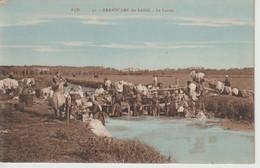 GRANDCAMP-les-BAINS, Le Lavoir - A.D.31 - Otros Municipios