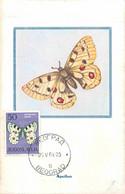 Yougoslavie Papillon Butterfly Lot De 6 Cartes Maximum Maxicard CM - Papillons