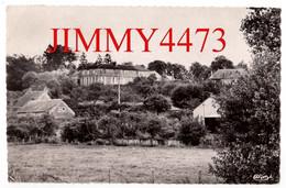 CPSM Dentelées - COURTENAY En 1954 - Château Des Princes De Courtenay - 45 Loiret - Edit. COMBIER Macon - Courtenay