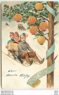 N°14987 - Carte Gaufrée - Prosit Neujahr 1904-  Garçons Sur Une Luge Apportant Des Cadeaux - New Year