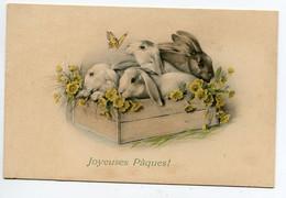 VIENNOISE 018 M.M VIENNE Nr 576 - Joyeuses Paques Les Lapins En Cagette Et Le Papillon Jaune - Vienne