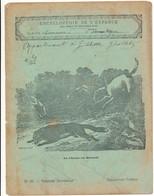 Couverture De Cahier D'Ecolier - La Chasse Au Renard - Collection Lebrun - Omslagen Van Boeken