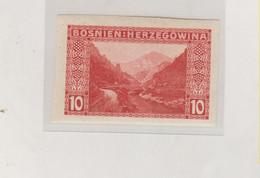 BOSNIA AND HERZEGOVINA AUSTRIA 1906 10 H  Imperforated Hinged - Bosnie-Herzegovine