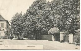 Antieke Cp   Cleve.  Nassauer - Allee  1919 - Kleve