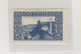 BOSNIA AND HERZEGOVINA AUSTRIA 1906 25 H   Imperforated Hinged - Bosnie-Herzegovine