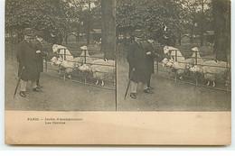 PARIS - Jardin D'Acclimatation - ELD - Les Chèvres - Parks, Gardens