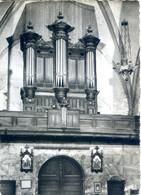 (31) RIEUX VOLVESTRE  La Cathédrale – Les Orgues - Altri Comuni