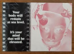 The Fort Lauderdale International Film Festival Carte Postale - Advertising
