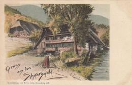 Gruss Aus Dem Schwarzwald  - C. Liebich Gelaufen 1901 - Altre Illustrazioni