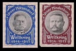 WW1 Era  GERMANY  AUSTRIA  HUNGARY CINDERELLA VIGNETTE Ours Hotzendorf And  Hinderburg - Erinnophilie