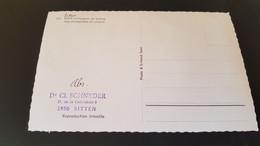 Sion - Stempel Dr Cl. Schnyder Sitten - Unclassified