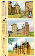 Lot De 6 Buvards Grégoire. Châteaux De Josselin, Meillant, Pau, Vitré, Rempart De Carcassonne, Hospices De Beaune. - Zwieback