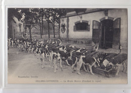 02 VILLERS COTTERETS CHASSE A COURRE EQUIPAGE MENIER--REPAS DES CHIENS - Villers Cotterets
