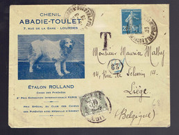 Semeuse 140 / Lsc 1923 Illustrée Chenil Abadie-Toulet  Chien Des Pyrénées => Liège Taxée 50c - 1906-38 Semeuse Con Cameo